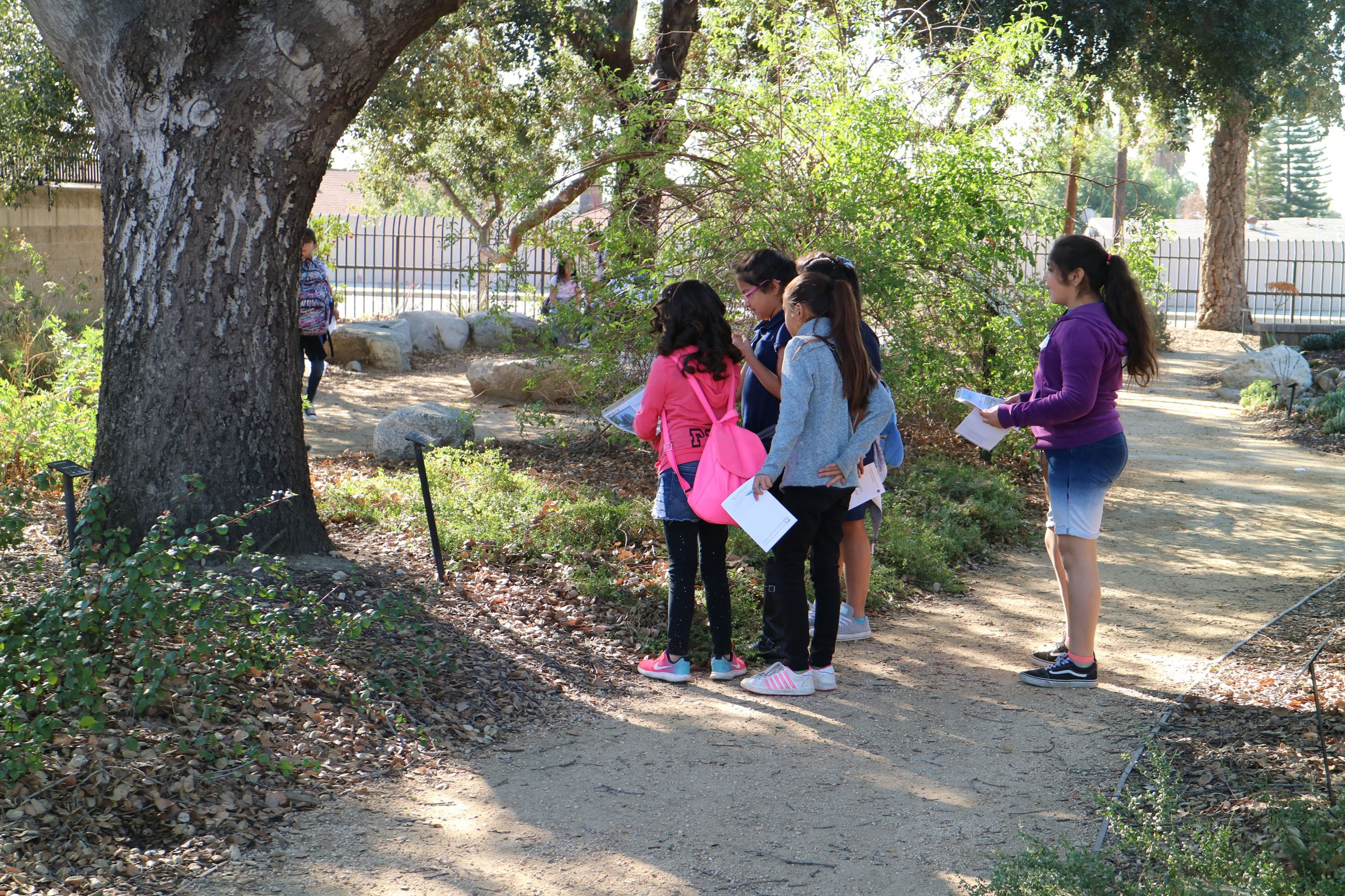 Students exploring garden