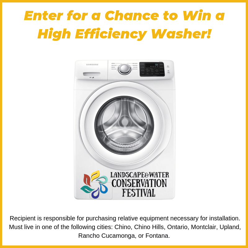 Copy of Enter for a chance to WIN!.png
