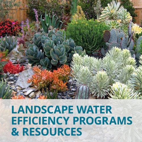 Landscape and Water Efficiency Programs