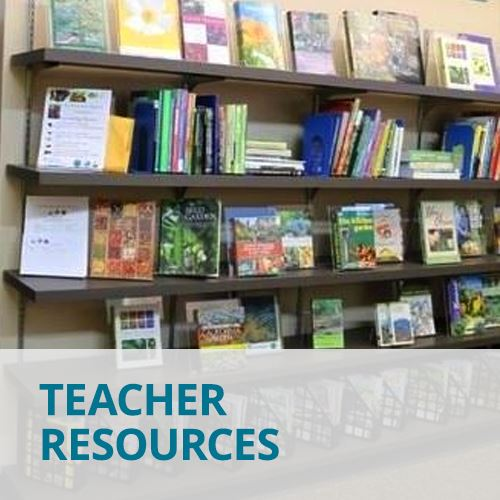 Teacher Resources. Learn More.