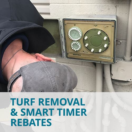 Turf Removal and Smart Timer Rebates