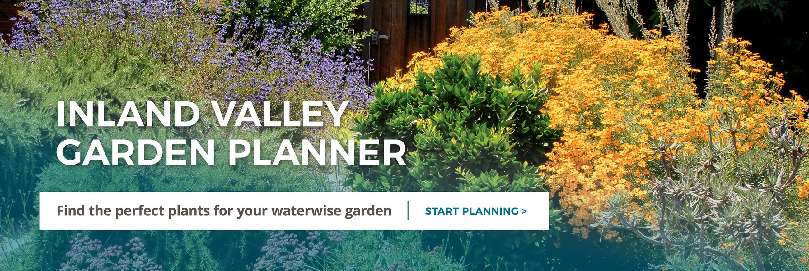 Inland Valley Garden Planner. Find the perfect plants for your waterwise garden. Click to start plan