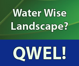 Digital Billboard_QWEL_201508_for web2